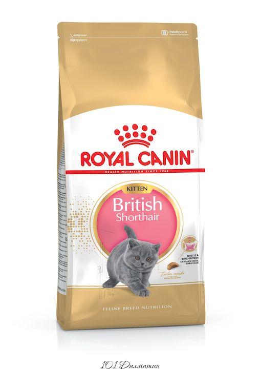 Роял Канин Британские котята до 12 месяцев
