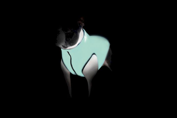 Двусторонняя курточка для собак Airy Vest Lumi салатово-оранжевая (светится в темноте)