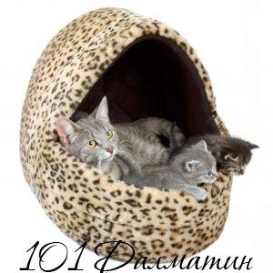Домик для Котят Флисовый