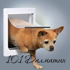 Уличные дверца для собак (пластик) 25х29 см,белый