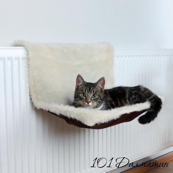 Гамак подвесной для кота