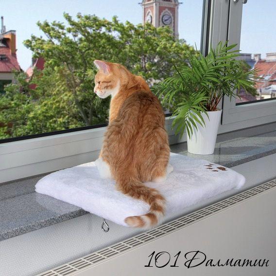 Место для кота с креплением